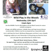 'Wild Play In The Woods' – 12th April