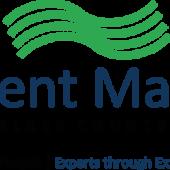 Vacancy: Talent Match Senior Mentor
