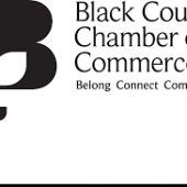 BCCCI Are Seeking A Board Member