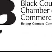 BCCCI Are Seeking A Board Member
